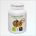 Cordyceps Premium 90 cps